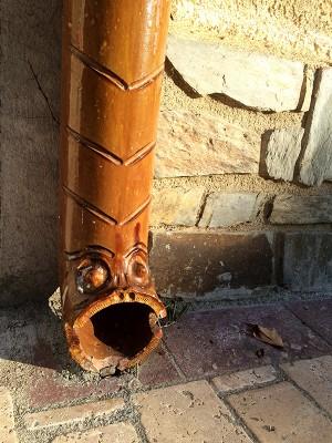 Turtugada marron à Collioure