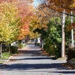 Petites rues pleines de charmes à Saint-Michel - Québec